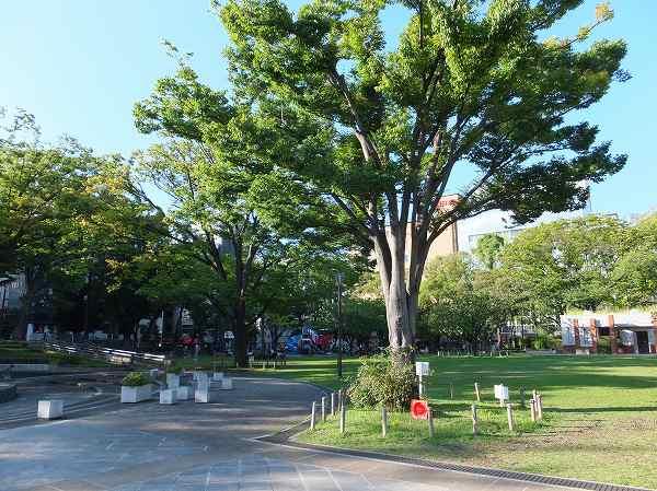 ほのぼの横浜公園