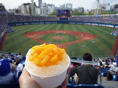 ハマスタ名物:みかん氷:横浜スタジアム