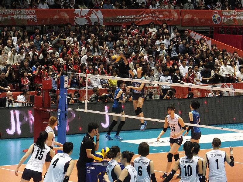 試合前のウォーミングアップ:リオデジャネイロオリンピック最終予選