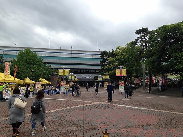 高速道路のすぐ向こうには阪神甲子園球場!