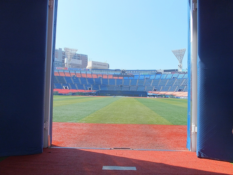 横浜スタジアム朝の無料開放!キャッチボール体験に行ってきた♪