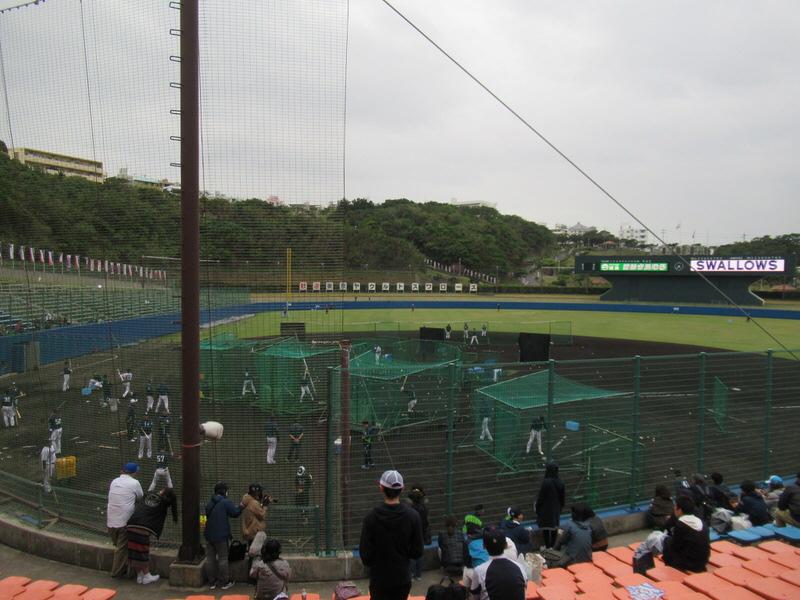浦添・東京ヤクルトスワローズキャン場